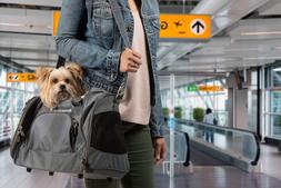 Sherpa American Airlines Duffel Airline Approved Pet Carrier