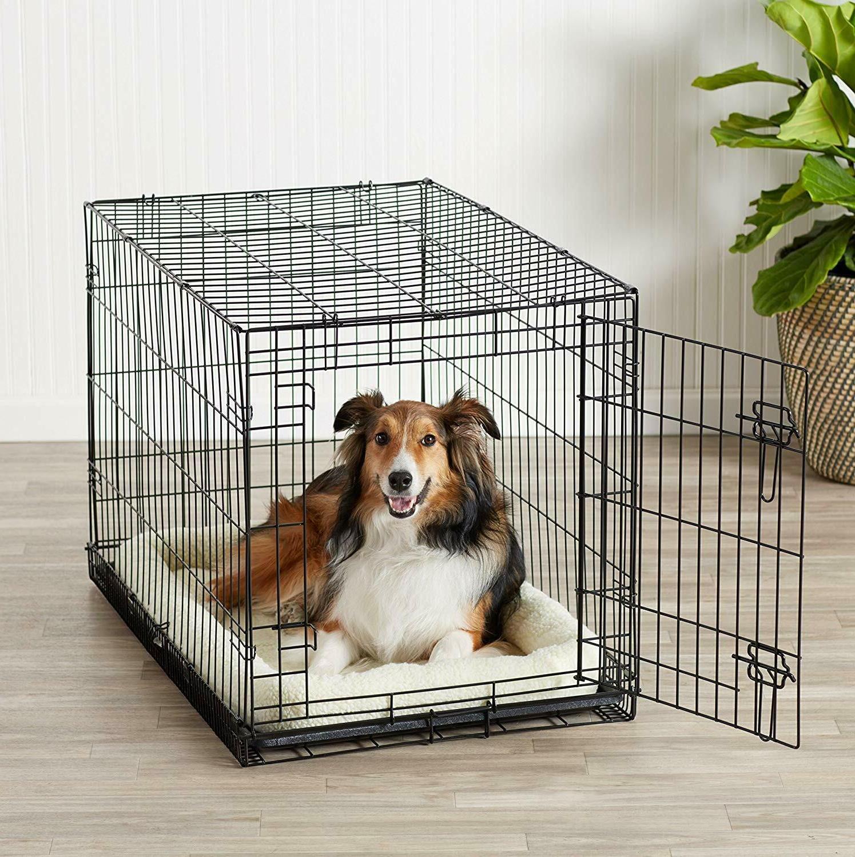 AmazonBasics Single & Double Door Dog