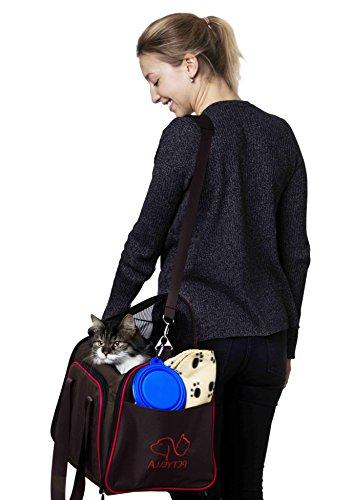 Petyella Carrier for and Cats Sided - Airline Kennel Travel - 2.8 Carriers with Bonus