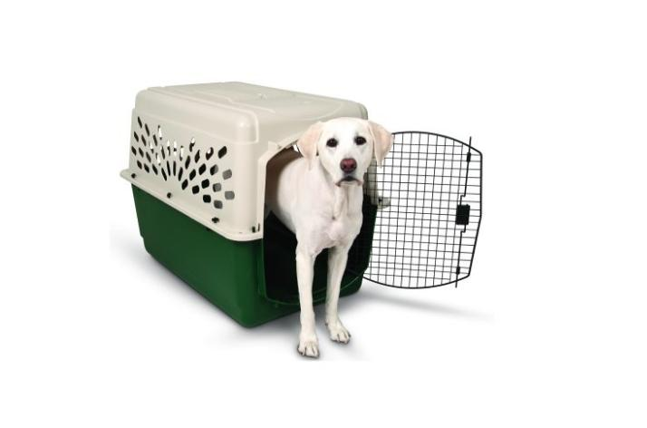 Size Portable Travel Pet Carrier Home
