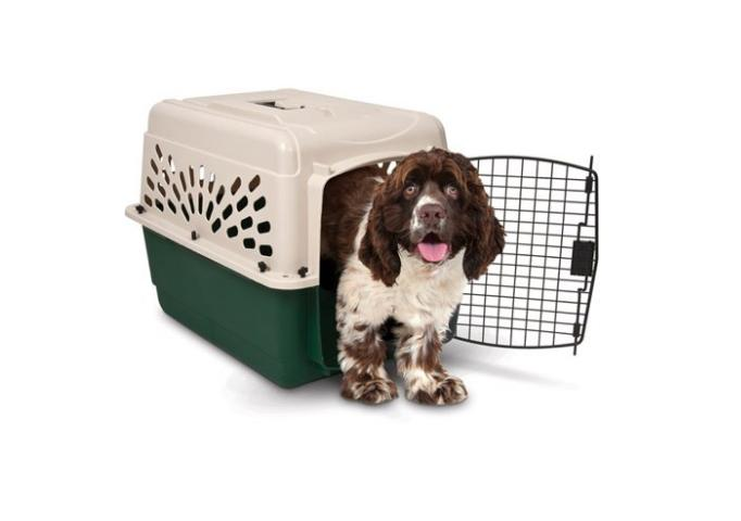 Size Dogs Pet Carrier Secure