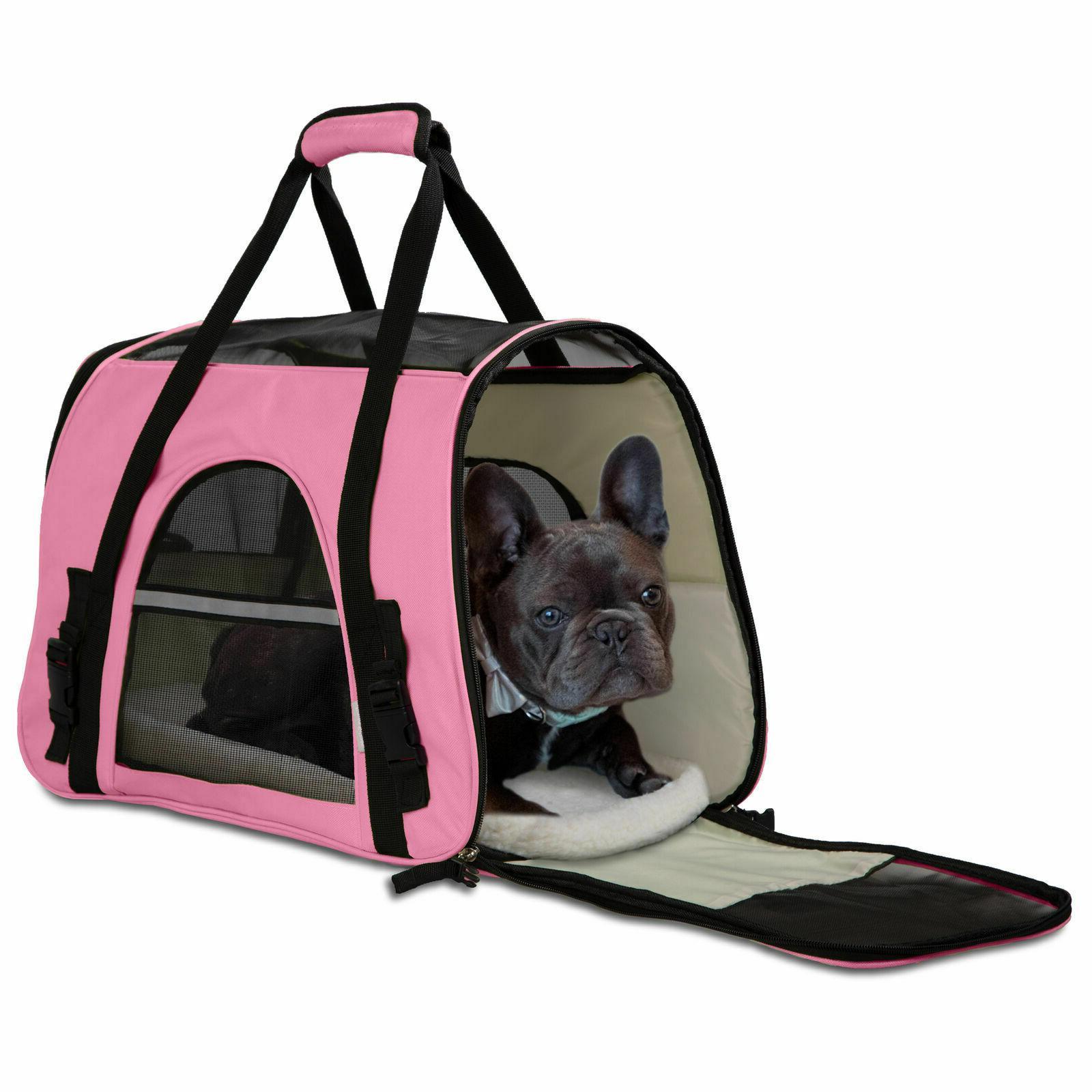 Pet Case Airline Cat