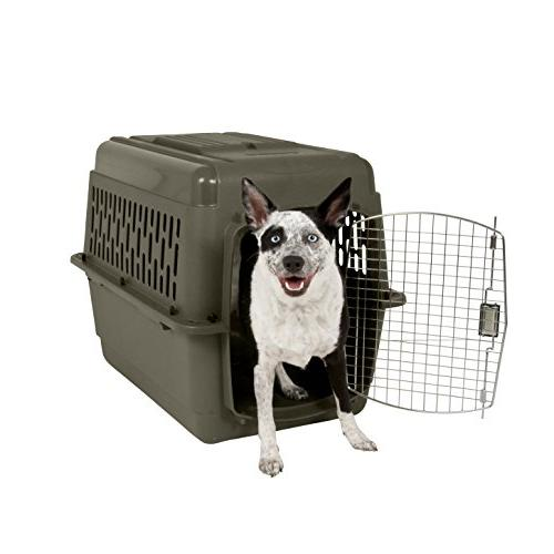 Aspen Pet Carrier Lock, 9 Colors