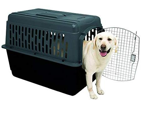 Aspen Pet Porter Pet Lock, 9 Colors