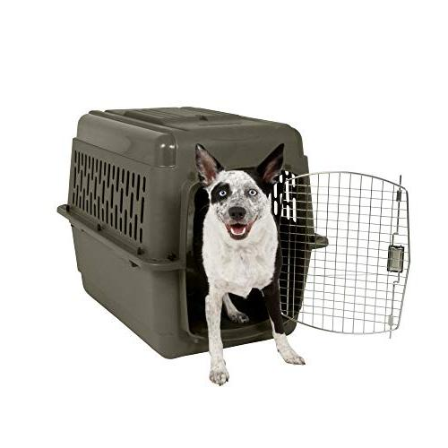 Aspen Pet Pet Carrier with Lock, 9 Colors